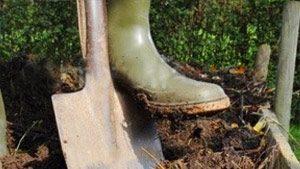 Gartenpflege und Gartenarbeit - unser Service rund um Haus & Garten