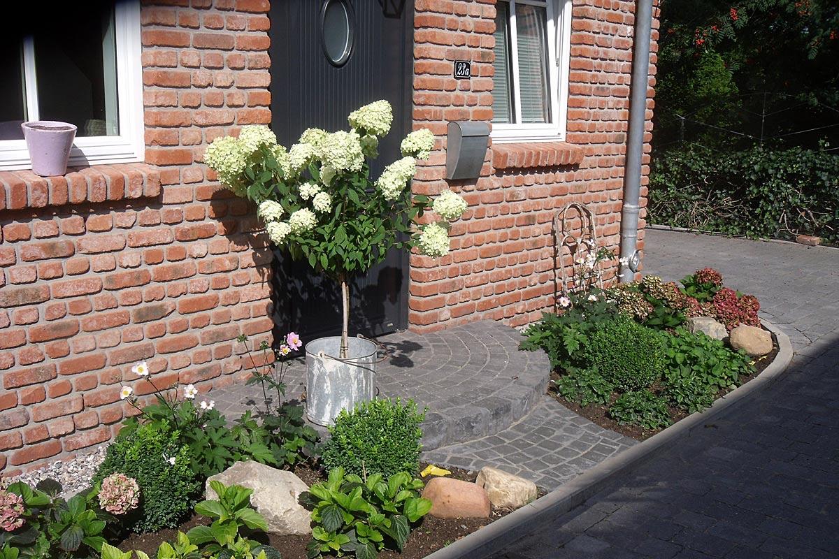 Eingangspodest Hortensienstämmchen Naturstein