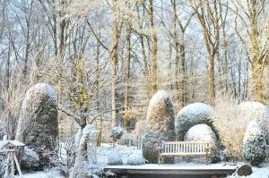 Gartentipps - Gartenarbeiten im Winter