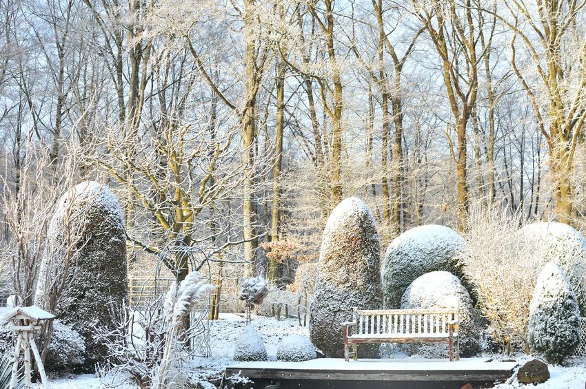 Archiv ? Reinhard Schäfer | Garten- Und Landschaftsbau Gmbh Gartengestaltung Im Winter