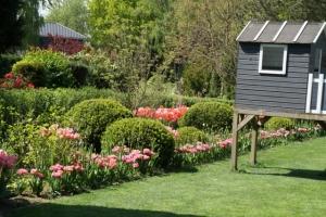 Rasenpflege, Tulpen und Buchsbaum mit Gartenspielhaus