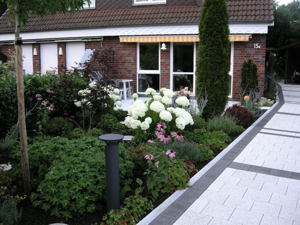 Säuleneiche, Hortensie, Betonpflaster, Ahrensburg